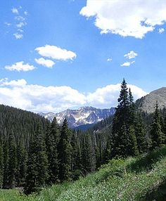 Sscenic views of Circle K Ranch  http://www.ranchseeker.com/index.cfm/pg/listing_details/id/9562/frompopup/0  #colorado #nature #travel