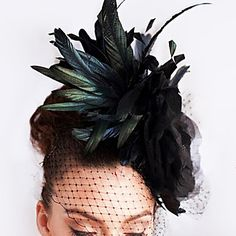 Luxury Vintage Feather/Tulle Special Occasion Veil Headpiece – USD $ 49.99