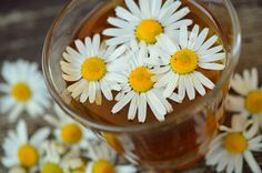 Do you know that chamomile flowers have the effect of nourishing your skin as well as getting rid of those crow's feet around your eyes? Try this easy DIY eye mask recipe. Ingredients: Chamom…