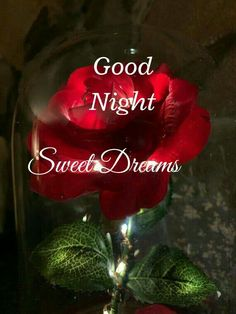 #goodnight Good Night Beautiful, Good Night Sweet Dreams, Love Images, Beautiful Images, Happy Birthday Images, Neon Signs, Christmas Ornaments, Holiday Decor, Good Night