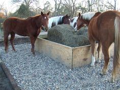 Horses eating hay on rocks to keep feet clean - Angela & Kenny . Like the idea of standing on small rocks to keep mud away; but, I can't see horses not trying to get in the box with the hay. Horse Hay, Horse Paddock, Horse Stables, Horse Farms, Horse Love, Horse Feeder, Hay Feeder For Horses, Horse Shelter, Horse Rescue