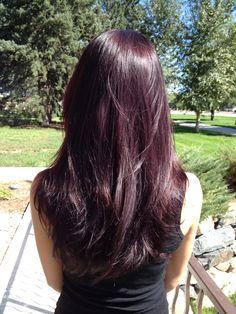 Deep & Rich Violet Hair. Beauty By Allison. Fort Collins Hair. Salon Salon