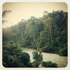 Bukit lawang, Sumatra <3