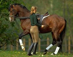 German dressage trainer-Alexandria Stahlecker. Horses like no other.