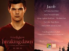 Breaking Dawn part 1 - breaking-dawn-the-movie Wallpaper