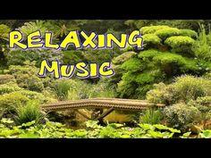 Relaxační hudba - ** ohromující ** - YouTube