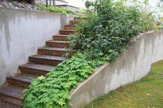 Slänt med stödmur och trappa