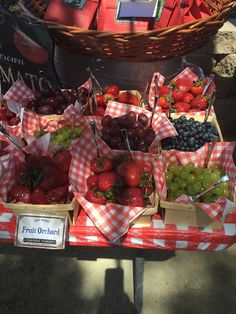 berries at a Farmers Market birthday party! See more party ideas at !Fresh berries at a Farmers Market birthday party! See more party ideas at ! Picnic Theme, Picnic Birthday, Cowgirl Birthday, Cowgirl Party, 1st Birthday Parties, Picnic Parties, Petting Zoo Birthday Party, Birthday Ideas, Country Birthday