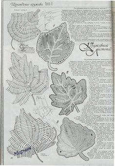 IRISH CROCHET LACE--looks more like Romanian point lace to me. Not sure that I've ever seen this braid in Irish crochet before Crochet Leaf Patterns, Crochet Leaves, Crochet Motifs, Crochet Chart, Crochet Designs, Crochet Doilies, Crochet Flowers, Crochet Stitches, Filet Crochet