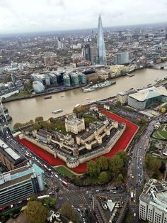 Two major features of #TowerPoppies will remain until the end of November, then go on a National Tour @David_Cameron
