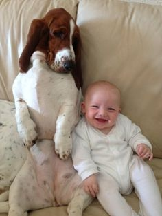 Basset Hound and laughing baby