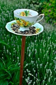 Tea Cup bird feeder I think so... diy