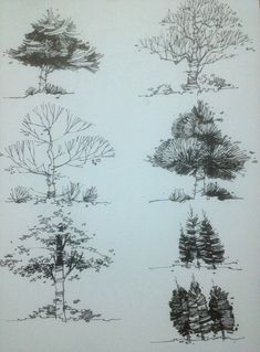 Architecture Drawing Of Trees mike lin: how to draw trees with a pen (gotta love listening to
