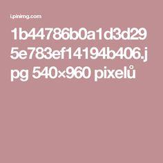1b44786b0a1d3d295e783ef14194b406.jpg 540×960 pixelů