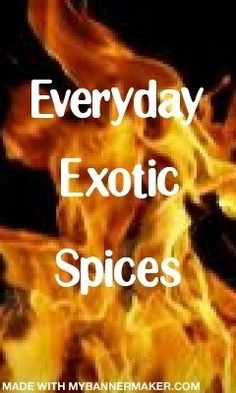 Everyday Exotic Spices - Updated this webpage.  Hoping that its an upgrade (or improvement) for site visitors.  Still the same mission, i.e. showing people hot to use everyday spices for everyday cooking and spice up their daily menu.  This page shares dishes from a diversity of cultures - Italian, Chinese, Pakistani and more.  Start at the top with our Fun on Facebook section and scroll all the way down and StumbleUpon unique and tasty food and cooking recipes and ideas. everyday-exotic-s