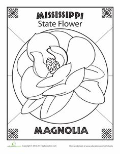 1000 images about magnolias on pinterest magnolia trees magnolia centerpiece and magnolia. Black Bedroom Furniture Sets. Home Design Ideas