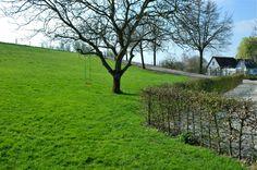 Aanleg landelijk terras en landelijke erfafscheiding regio Utrecht