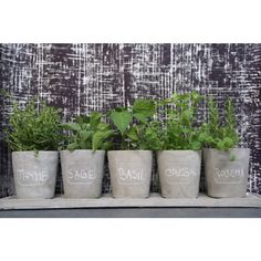images about My HomeGarden Stuff Retail