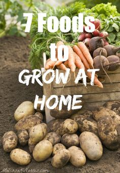 Tired of rising grocery prices? These are 7 foods we grow enough of to never purchase from the store. Learn how to begin growing your own groceries! Love the free resource guide.
