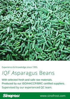 FROZEN ASPARAGUS BEANS IQF ASPARAGUS BEANS FROZEN COWPEAS  IQF COWPEAS  FROZEN ASPARAGUS BEANS SUPPLIER CHINA IQF ASPARAGUS BEANS SUPPLIER CHINA FROZEN COWPEAS SUPPLIER CHINA IQF COWPEAS SUPPLIER CHINA FROZEN VEGETABLES SUPPLIER CHINA FROZEN FRUITS SUPPLIER CHINA  MORE INFO: cwl@sinofrost.com.cn Asparagus Beans, Frozen Vegetables, Raw Materials, Green Beans, China, Fruit, Food, Raw Material, Essen