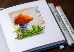 Грибных дел пятница!  | Mushroom  friday!  #lk_sketchflashmob, #art_markers, #art_we_inspire, #art, #sketchbook, #sketch, #illustration, #скетч, #иллюстрация, #скетчбук, #ботаника, #marker, #copicmarker, #copic, #copicart, #savannasketch, #botanical, #mushroom, #подосиновик, #orangecap, #boletus, #forest
