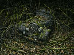 Peter Lippmann is an American-born photographer who has worked in Paris for over 25 years. He specializes in still life, advertising, magazine work, food, and trompe l'oeil. This work, Paradise Parking, offers 'a poetic look at the relationship between the creations of man and mother nature'. Lippman is represented by Gallery SophieMaree in Amsterdam.