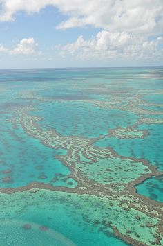 Great Barrier Reef   - Most amazing thing I have ever seen.. I will get back one day!!!