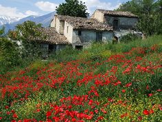 Old house in Abruzzo, Italy.  David and Pauline Brenner from Villasfor2 in Abruzzo