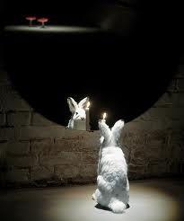 Albino 2000 stuffed hare, mirror, candle 150 x 150 x 60 cm Heino Collection Albino Rabbit, Little Bunny Foo Foo, Mirror Art, Mirror Candle, Mirrors, Multimedia Arts, White Rabbits, Rabbit Art, Believe In Magic