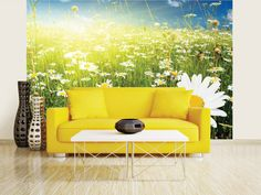 Summer Meadow Full Of Daisy Photo Wallpaper Wall Mural, Office, Kitchen…