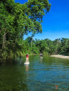 Stand Up Paddle Boarding, Mossman River, Port Douglas, Australia