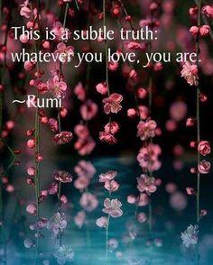 ¤ Poet Ponderings ¤ poetry, quotes & haiku - Rumi