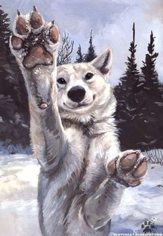 I am home again after a week and some days absence, and a few thousand miles more on the odometer. I spent some time on top of a mountain, some time in a valley, and most of the time painting and s. top drawing Lemmikki Paws by screwbald on DeviantArt Arte Furry, Furry Art, Anime Wolf, Cute Animal Drawings, Cool Drawings, Illustration Art, Illustrations, Dog Art, Fantasy Art
