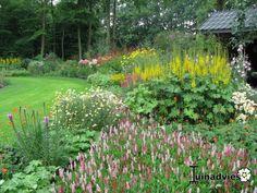 Een foto uit de tuin van Passiebloem
