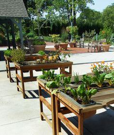 Gardening tips, raised garden beds, easy access, horticulture, vegetable ga Backyard Planters, Garden Landscaping, Diy Garden Projects, Diy Projects Videos, Raised Garden Beds, Raised Beds, Vegetable Gardening, Gardening Tips, Horticulture
