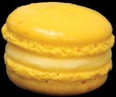 Lemon Cream  Crème de Citron