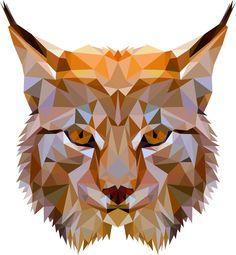 Bobcat design