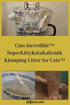 Looking for a dust free cat litter that comes in ergonomic packaging and keeps ammonia from forming? Let me Introduce you to Cats Incredible Cat Litter