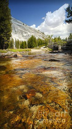 Items similar to Tranquil Tuolumne Meadows Mountain Stream, Yosemite California Fine Art Print on Etsy California National Parks, Yosemite National Park, Tuolumne Meadows, California Camping, Yosemite California, Northern California, Take Better Photos, Fine Art, Trip Planning