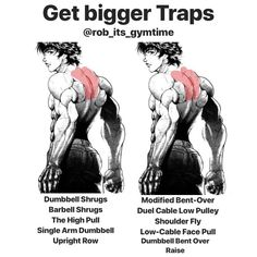 """Big trapezius muscles are one of the first areas of the body athletes want to work on. Some guys develop what we call """"no-neck syndrome'—their traps get so big they completely obscure the neck. Gym Tips, Gym Workout Tips, At Home Workout Plan, Workout Videos, At Home Workouts, Cardio Gym, Traps Workout, Neck Exercises, Weight Training Workouts"""