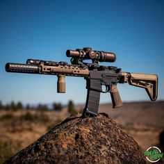 Weapons Guns, Airsoft Guns, Guns And Ammo, Battle Rifle, Firearms, Shotguns, Shooting Guns, Custom Guns, Hunting Rifles