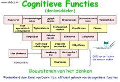 Praktisch hulpmiddel. Ontwikkeld in de laatste 25 jaar tbv de ondersteuning van de cognitieve ontwikkeling van kinderen en jongeren.