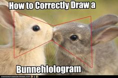 How to Draw a Bunnehlologram - February 5, 2011