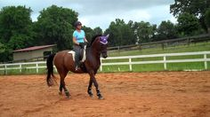 """""""The warm up canter. Are you really warming your horse up? Or just going in circles?"""" What do you do when you warm up your horse at the canter? Did this video give you more ideas on how you can warm your horse up in the canter?"""