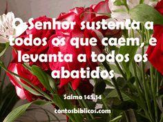Mensagem da Bíblia aos que se sentem desamparados ou desanimados, por causa de problemas amorosos ou financeiros.   José Guimarães  http://www.joseguimaraes.com/
