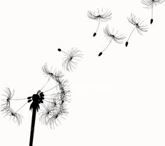 dandilion - Click image to find more Art Pinterest pins