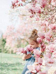Stock photo of little girl smelling beautiful spring blossoms by meaghancurry Summer Family Photos, Rosa Pink, Magnolia Trees, Spring Blossom, Spring Has Sprung, Spring Day, Spring Fever, Perfect World, Gardens