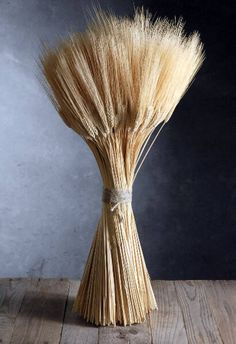 Natural blond Triticum wheat is great to use in bouquets, centerpieces and floral arrangements. Triticum wheat bundles are tall with beautiful golden yellow wheat stalks. The wheat's beard is soft. These washed and preserved dried wheat stalks Outdoor Wedding Decorations, Flower Decorations, Wheat Decorations, Fall Flowers, Dried Flowers, Wedding Flowers, Altar Flowers, Rustic Flowers, Wedding Bouquet