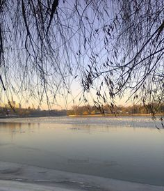Nature photo print  fall home decor  frozen lake winter