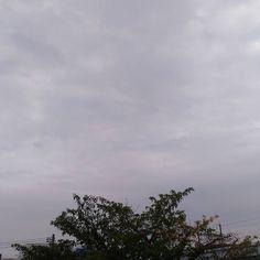 おはようございます曇り空の月曜日涼しい朝です() #sky #cloud #空 #雲 #イマソラ #goodmorning #おはよう